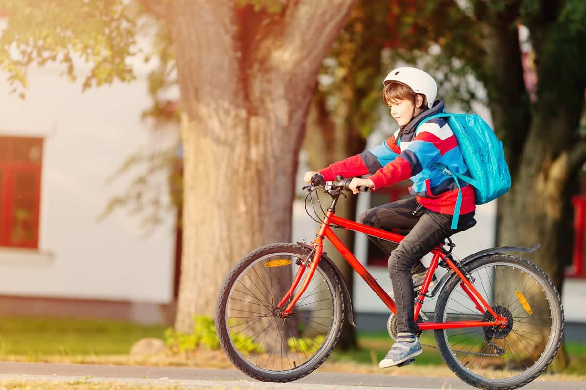 Best 20 Inch Kids Bike - kidsinwheels.com